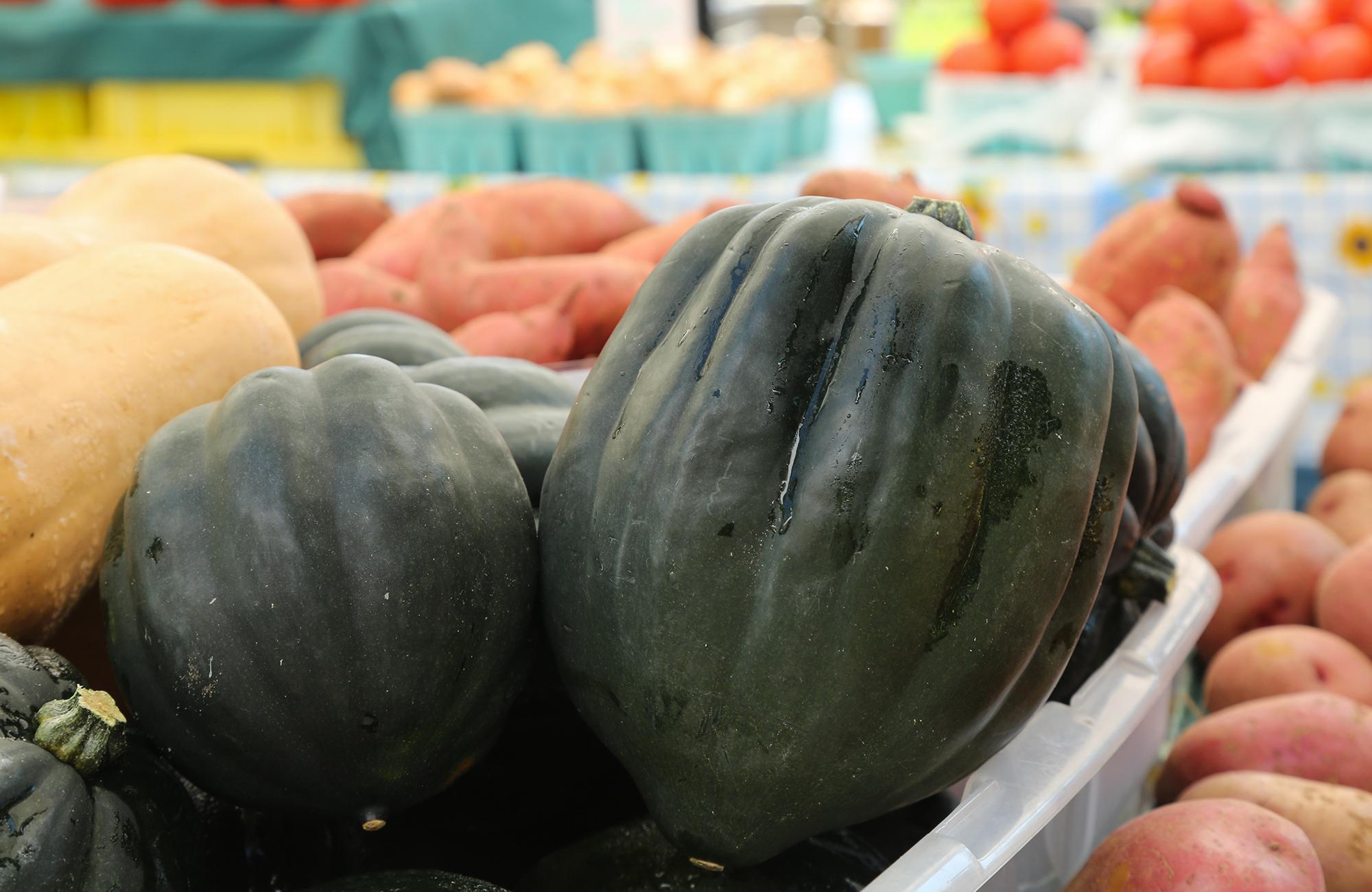 Picture of fresh acorn squash