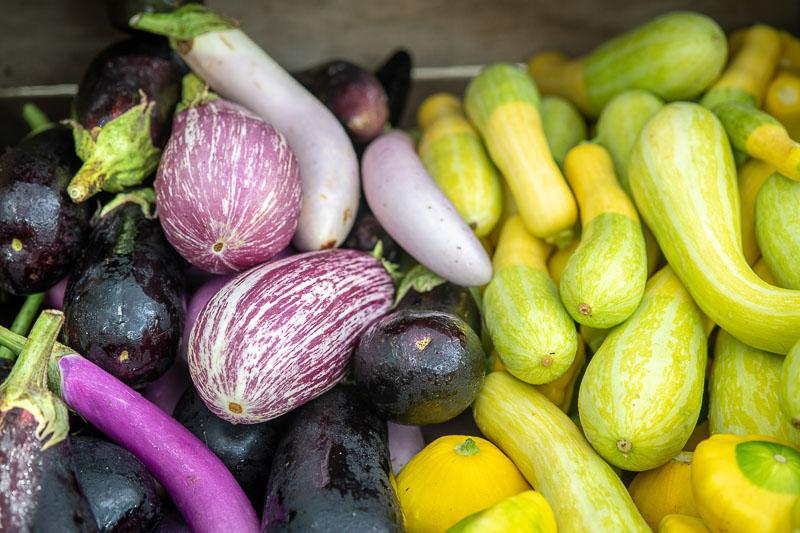 purple eggplant with yellow squash