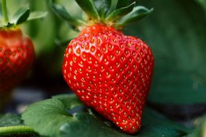 Bright red strawberry with green leaves